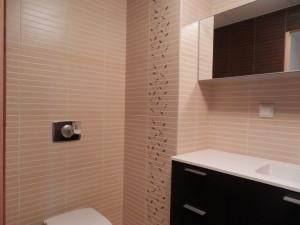 Ihastes plaaditud vannituba